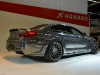 hamann-mirror-gc-4