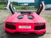 pink-aventador-roadster-and-kids-1