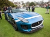 jaguar-f-type-project-7-at-pebble-beach-10