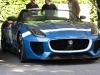 jaguar-at-goodwood-2013-31-of-38