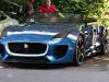 jaguar-at-goodwood-2013-32-of-38
