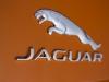Jaguar F-Type V8 S Badge