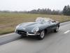 jaguar-4