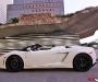 Lamborghini LP560 Spyder