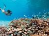four-seasons-resort-maldives-kuda-huraa-12
