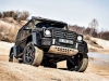 mercedes-and-raptor-17