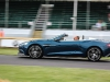 goodwood-moving-motor-show-2014-24