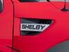 005-shelby-raptor