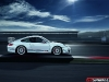 Official Porsche 911 GT3 RS 4.0 Limited Edition