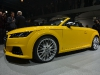 paris-2014-audi-tt-s-roadster-11
