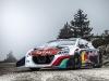 peugeot-208-t16-pikes-peak-race-car_100428457_l