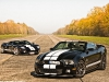Photo Of The Day Ford GT vs Shelby GT500 Supersnake 003