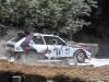 goodwood-festival-of-speed-2014-rally-stage-12