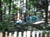 goodwood-festival-of-speed-2014-rally-stage-8