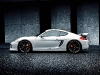 techart_for_porsche_cayman_s_exterior3
