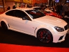 the-performance-car-show-at-auto-international-2013-016