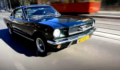 Video Mustang Club of Poland Organizes Mustang Race 2011