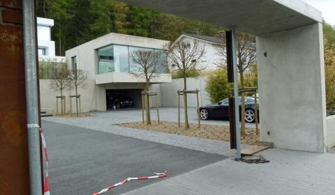 German Owner Soho Automobile Shot Dead in Luxury Villa