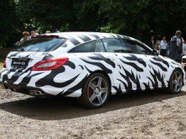 Mercedes-Benz CLS 63 AMG Shooting Brake Mule