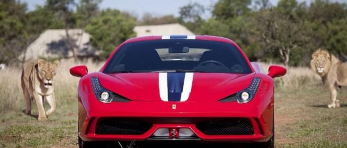 Ferrari 458 Speciale Among Lions