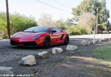 Lamborghini Gallardo LP570-4 Super Trofeo Stradale by Vibe Motorsports