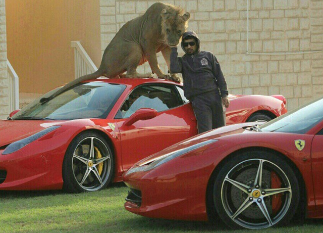 Meet Humaid, He Owns Many Supercars and Many Big Cats!