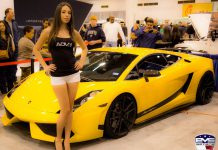 Houston Auto Show Girls