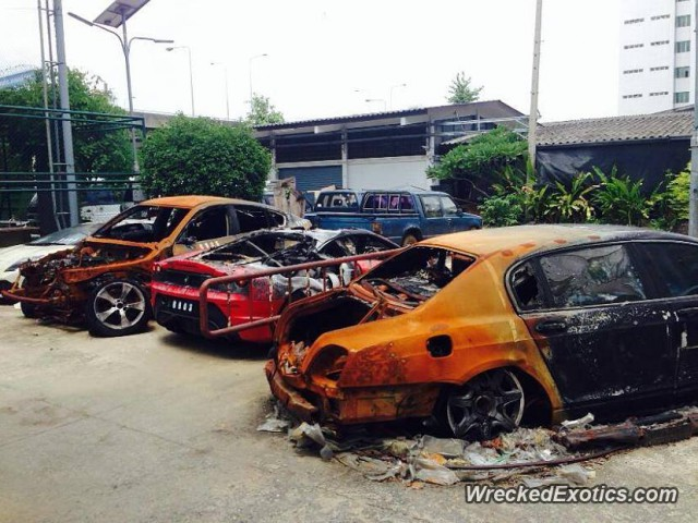 Selection of Exotics Destroyed by Fire in Thailand
