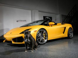 Lamborghini Gallardo Spyder with Strasse Wheels