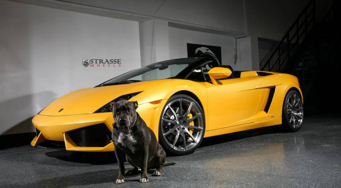 Lamborghini Gallardo Spyder  with Strasse Wheels