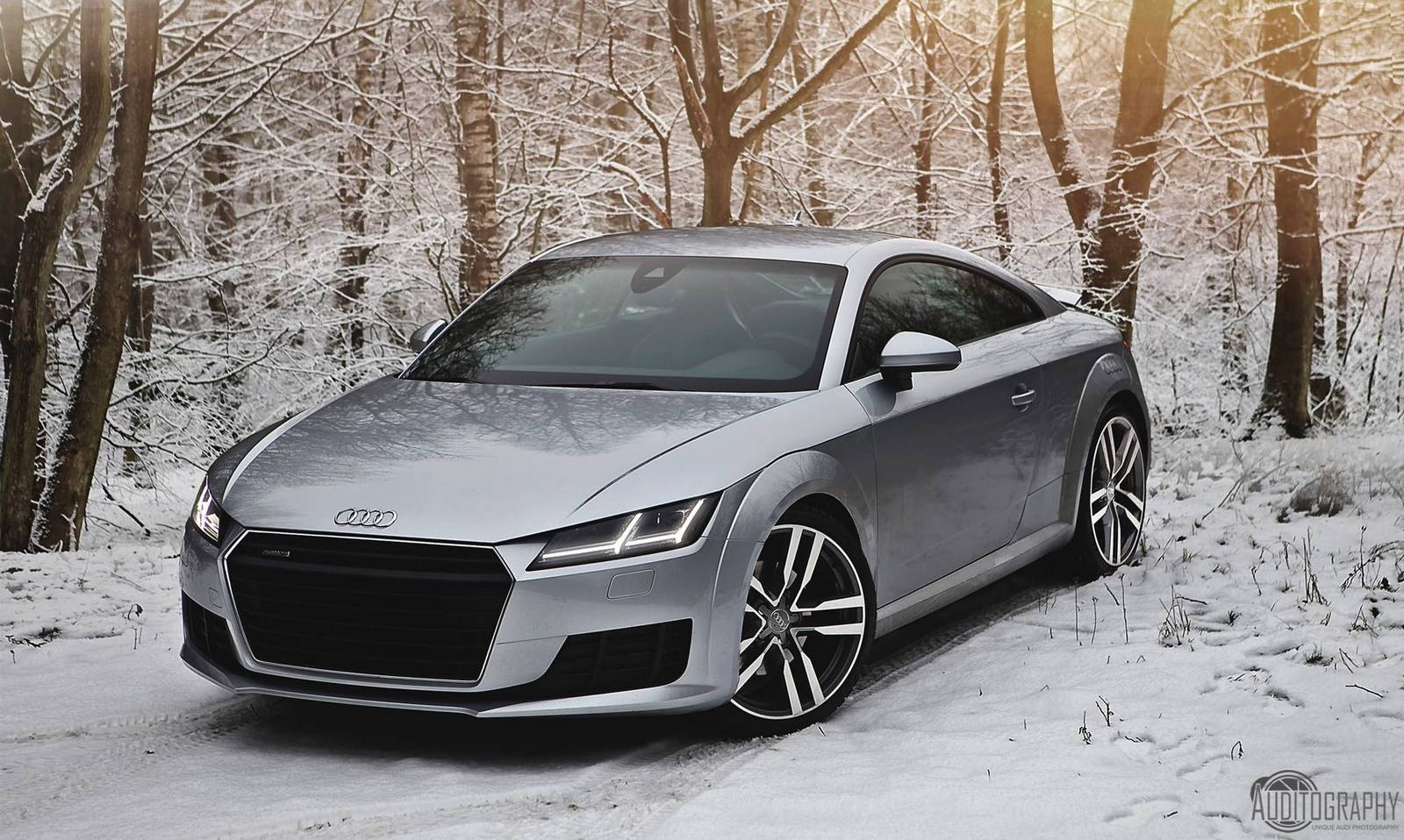 stunning 2015 audi tt photoshoot in swedish winter gtspirit. Black Bedroom Furniture Sets. Home Design Ideas