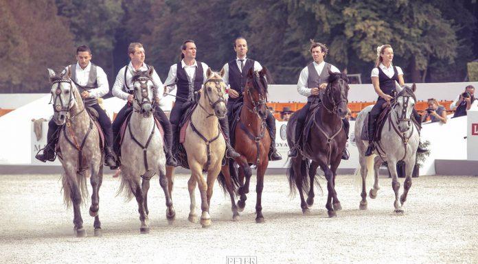 Chantilly equestrian display 2014