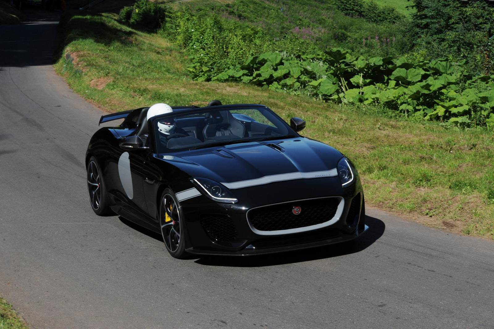 1. Jaguar Project 7. Credit. Jeff Bloxham