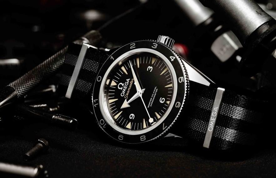 Omega Seamaster Spectre watch