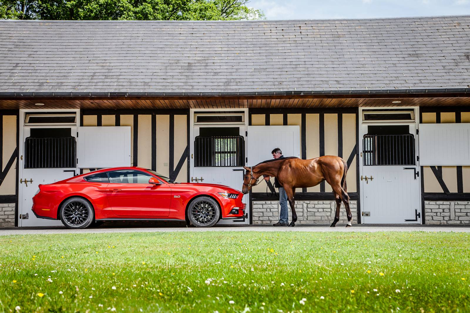 1306773343 Ford Mustang was Best Selling Sports Car in Germany in March - GTspirit