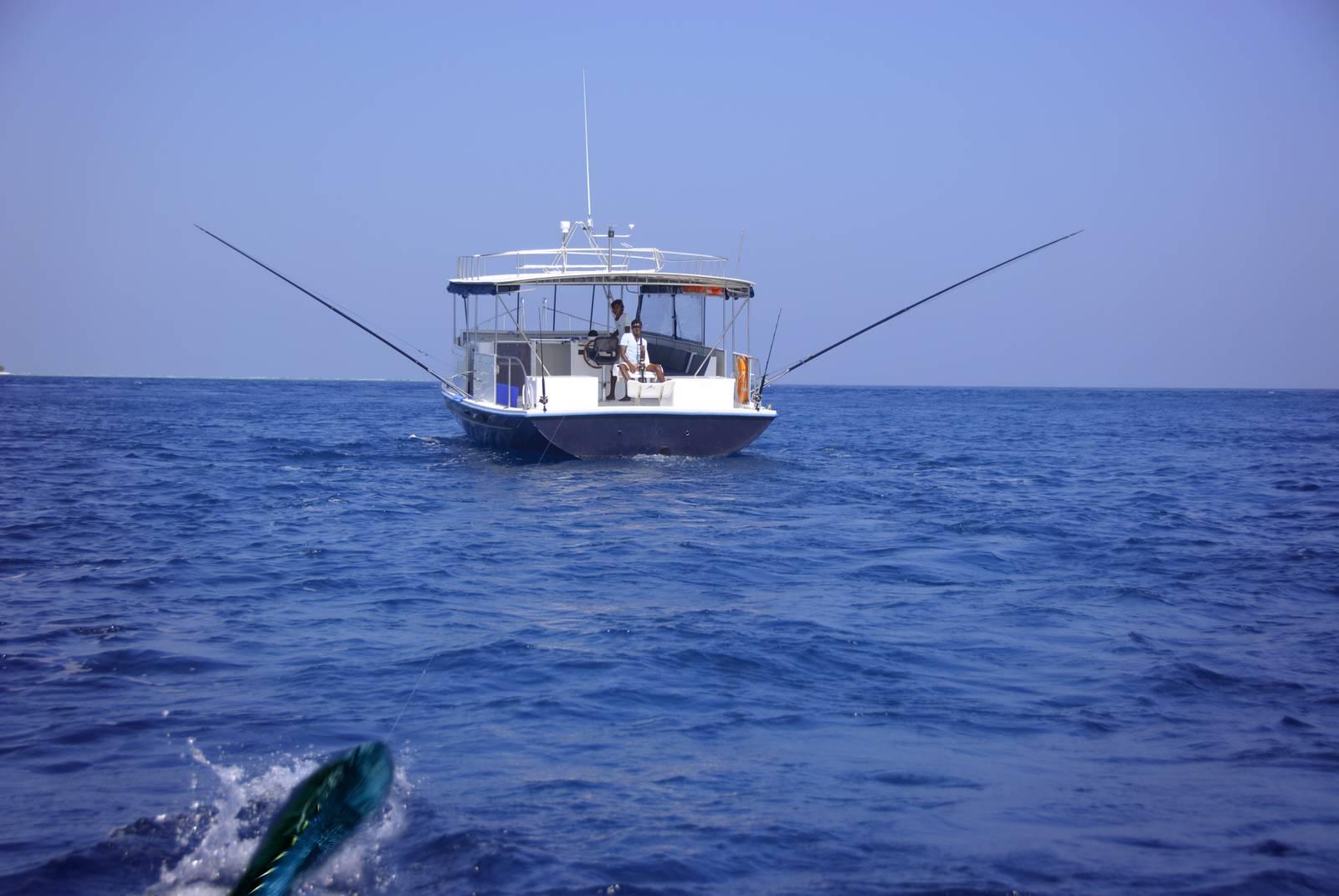 Anantara dhigu veli naladhu maldives resorts review for Sea spirit fishing