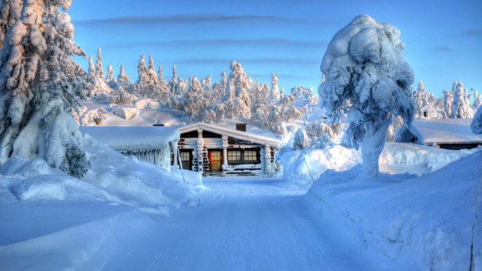Scandinavian Winter