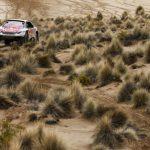 Dakar Rally 2017 Stage 7 (12)