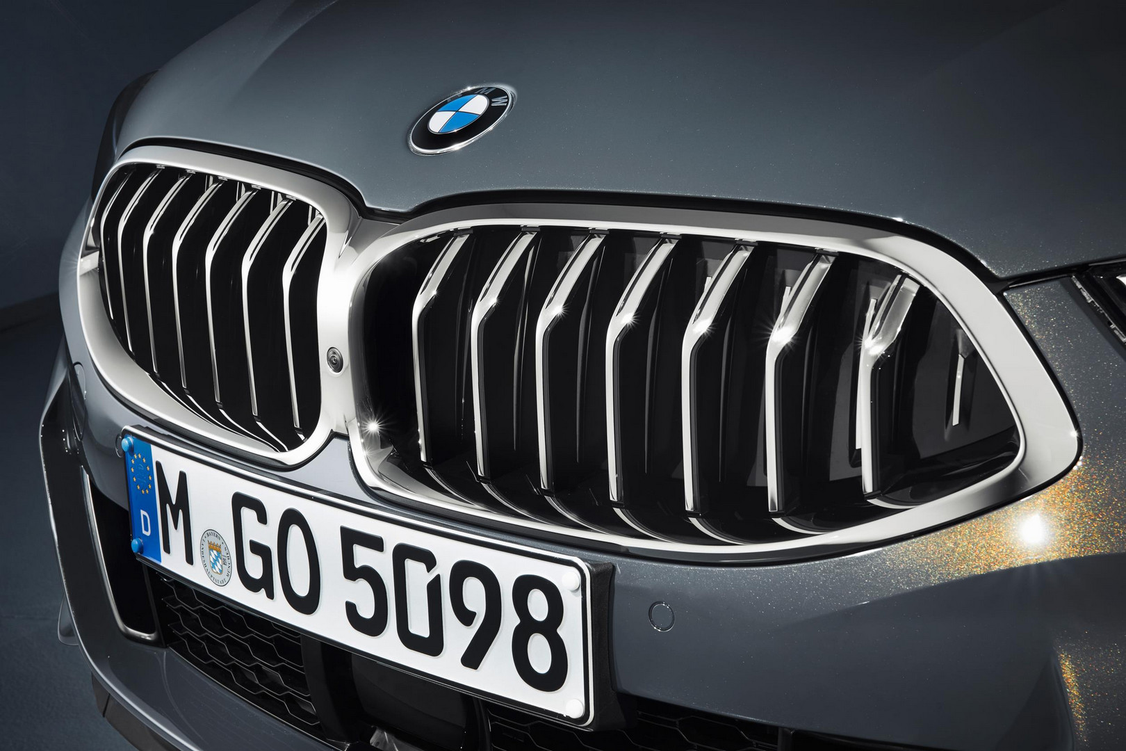 2019 BMW 8 Series Convertible Kidney Grille
