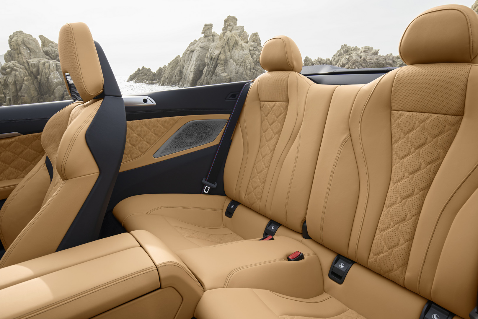 2020 BMW M8 Competition Rear Seats