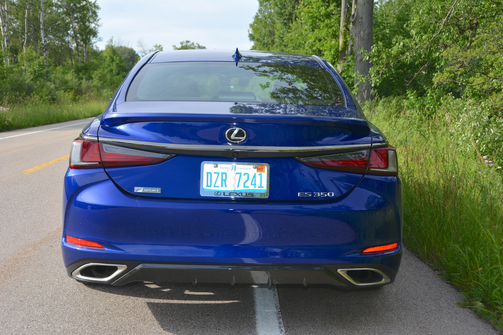 2019 Lexus ES 350 F Sport Rear
