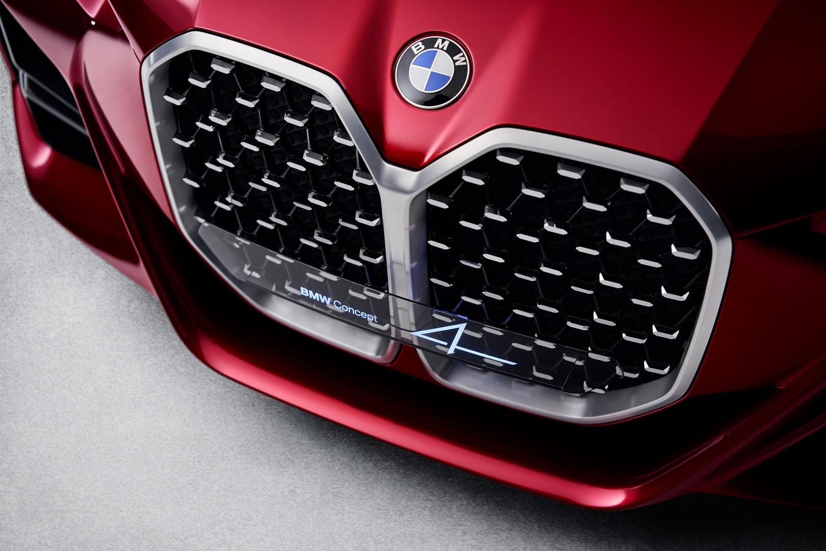 BMW Concept 4 Kidney Grille