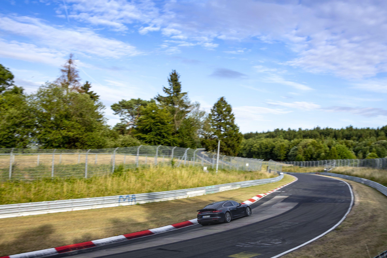 Panamera Lion Nurburgring